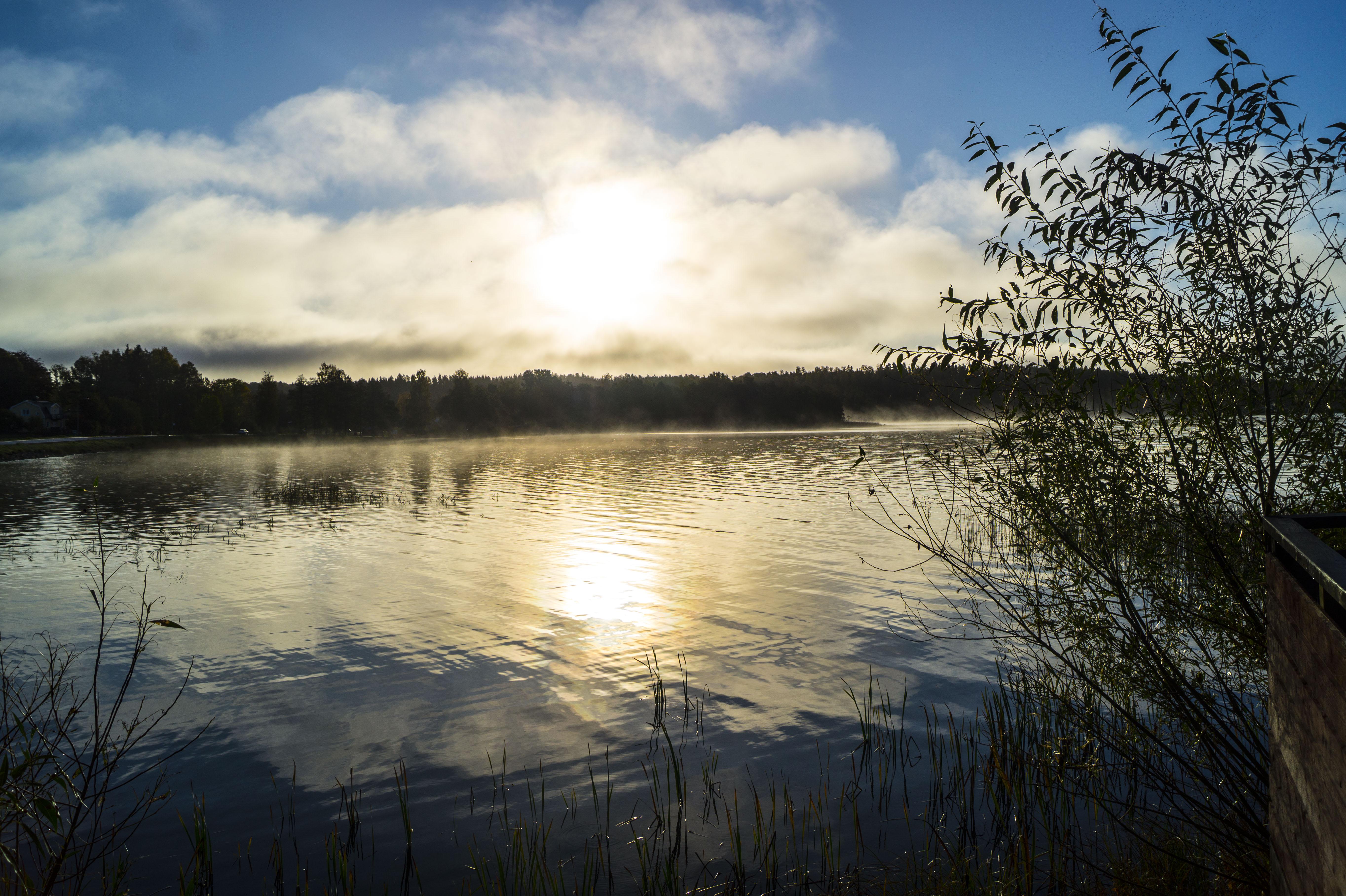 100517Nature photography morningdust