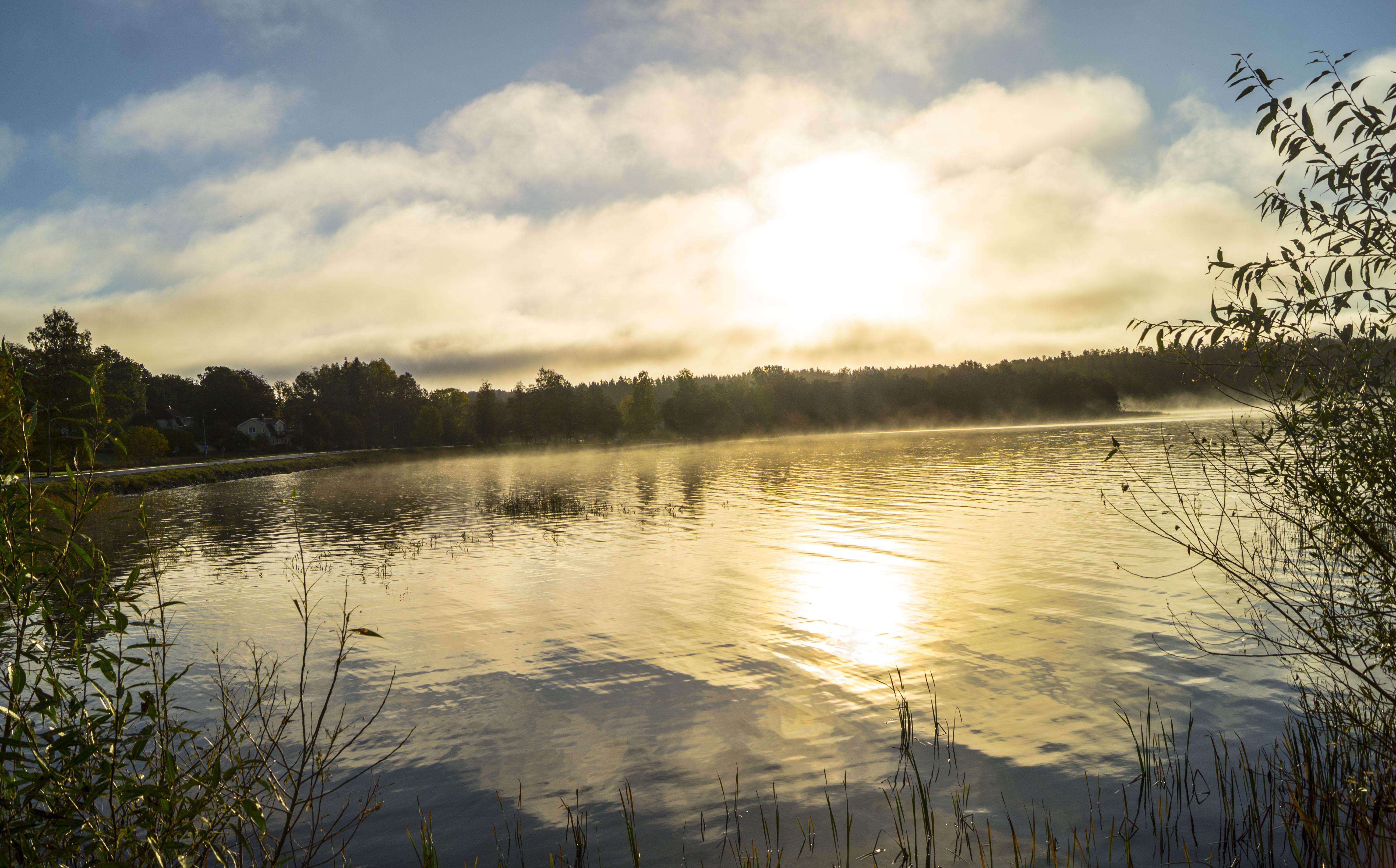100517Nature photography morningdust_1