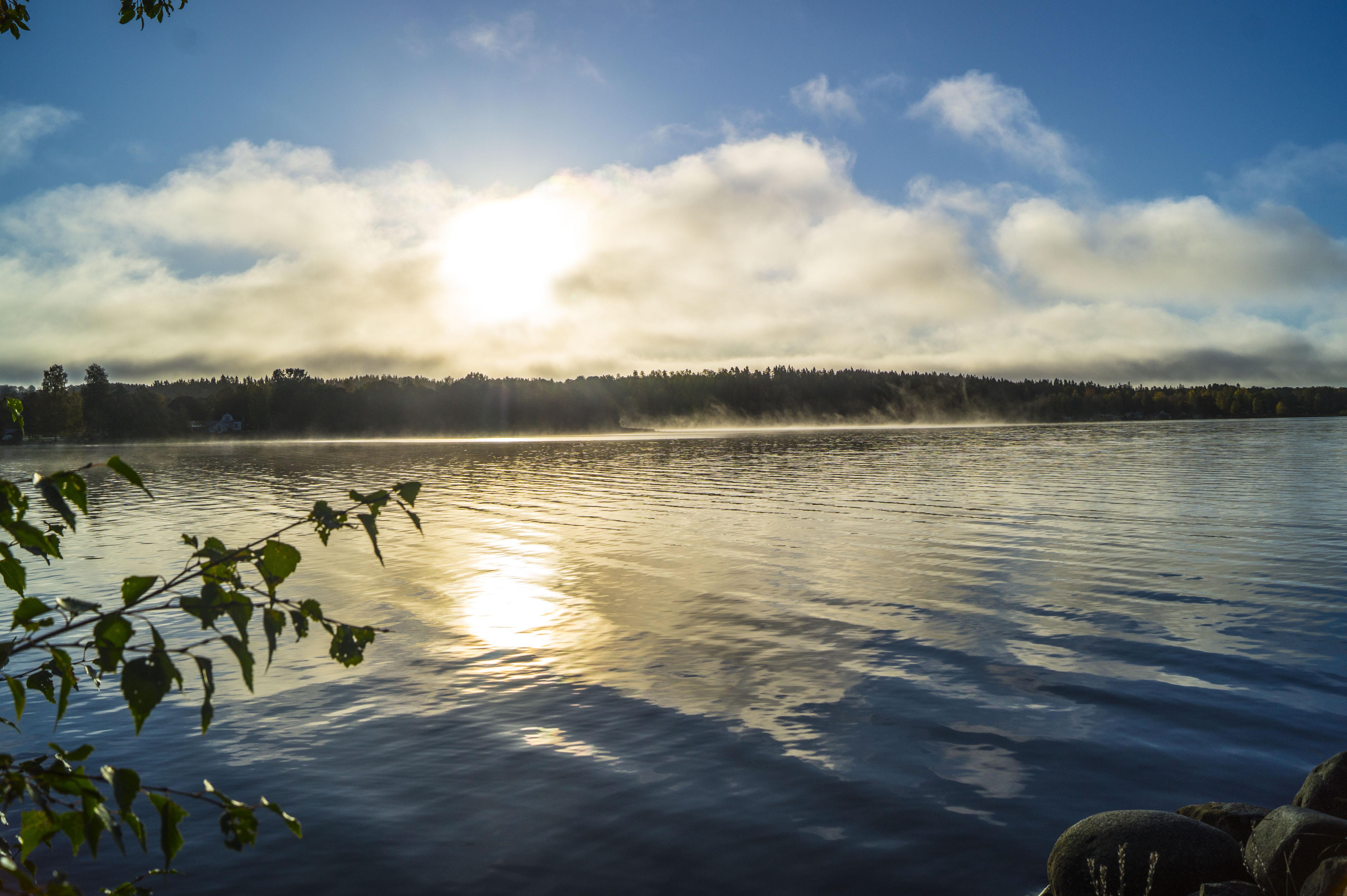 100517Nature photography morningdust_11