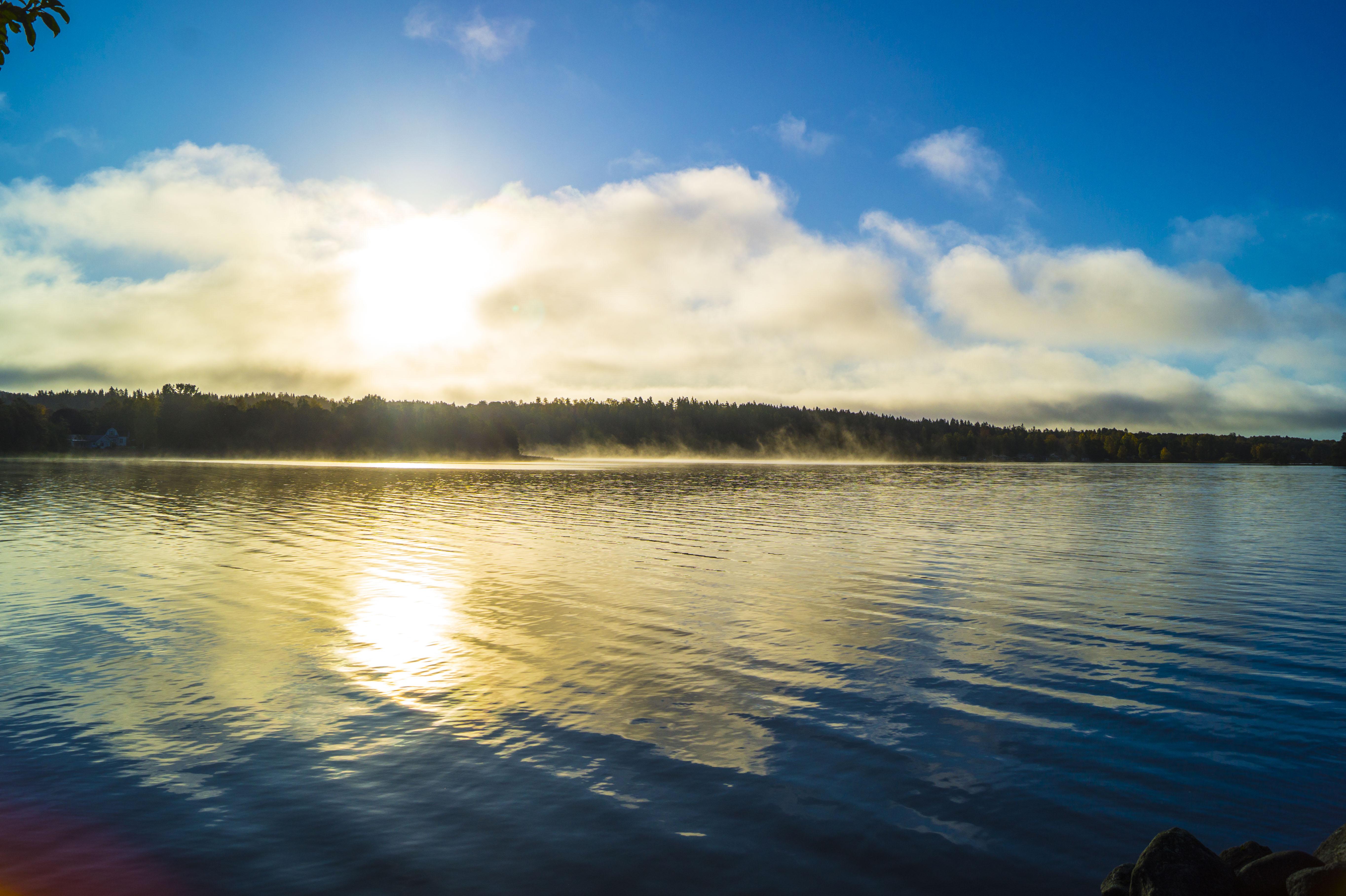 100517Nature photography morningdust_8